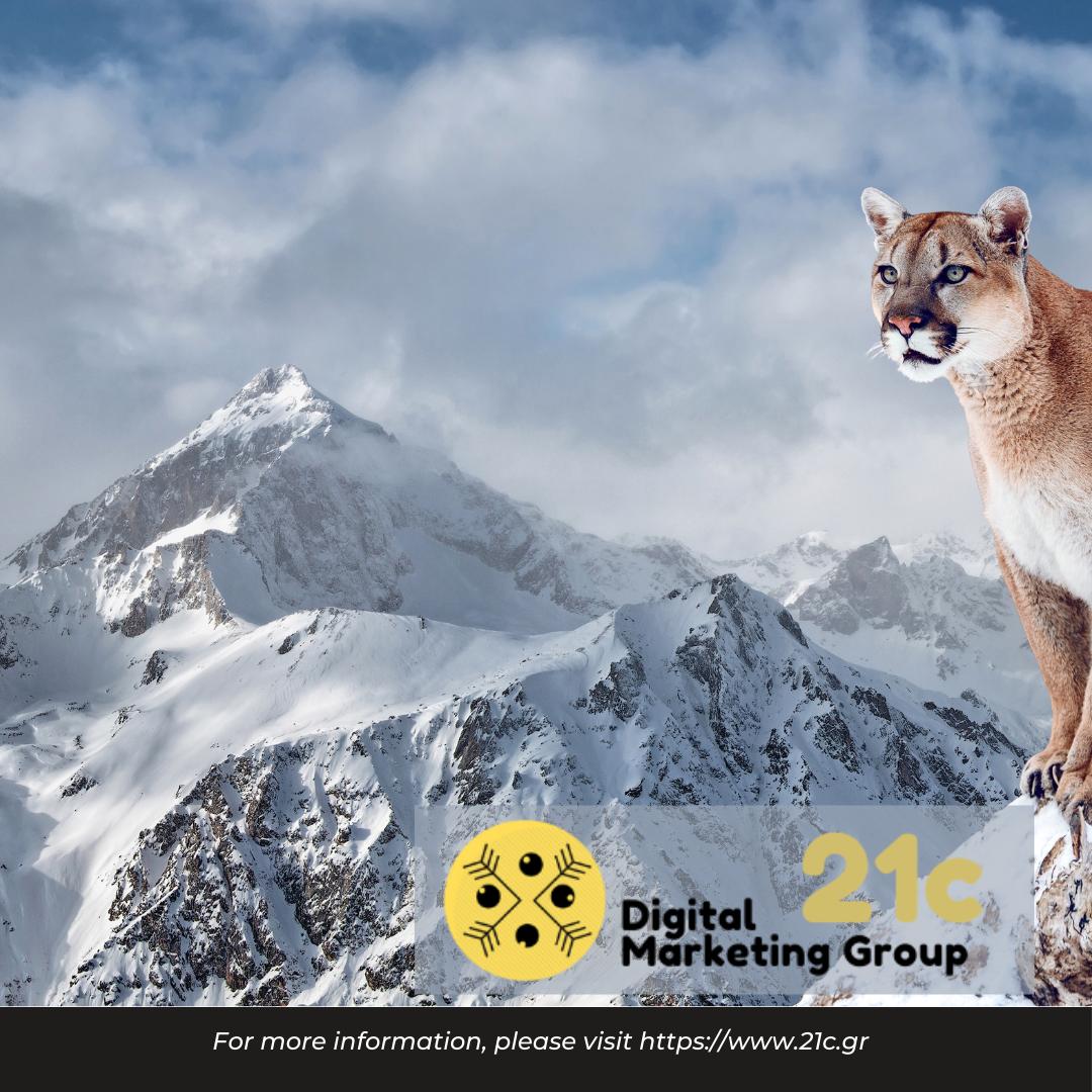 21c digital marketing